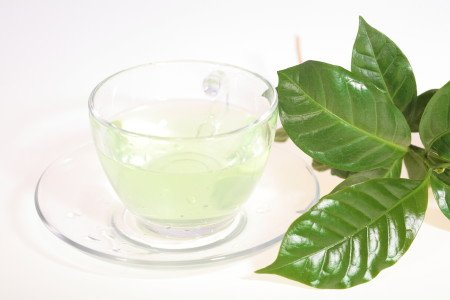 Green Tea, Green Tea Recipes & Weight Loss
