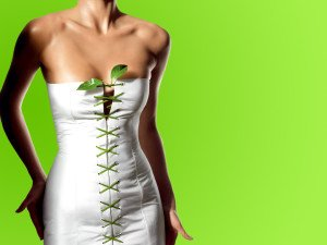 Green Tea, Green Tea Recipes & Weight Loss