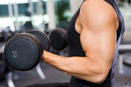 Men's Best Workout Program for Building Muscle