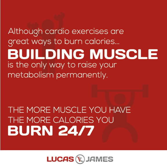 Why You Should Build Muscle