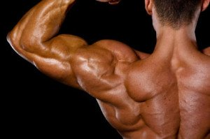 Boulder Shoulders: 5 Exercises to Build Your Delts