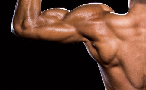 back muscle big How to Gain Lean Muscle Mass: