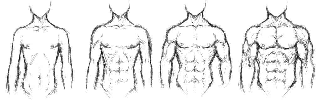 Bodytype2 1024x323 Your Body Type and Build: Men & Women