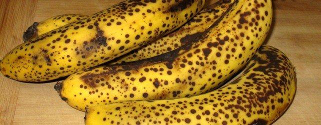 Banana Bread Protein Muffins Recipe