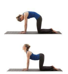 Lower Back Exercises That Strengthen Your Core